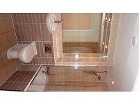 A great 1 Bedroom Apartment - Brixton