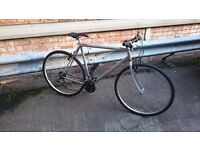 Raleigh commuters bike