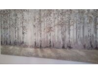 Lovely canvas print, predominately silver birch trees, taupe, grey and green in colour