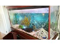 fish tank 4ft lengh 2 foot wide. come with everything