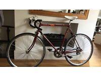 Diplomat 10 bike for sale