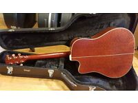 K Yairi DY62C Burled Mahogany / Cedar Guitar (Watch Demo of the Actual Guitar)