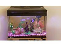 Aquamanta 70ltr Fish Tank & Cabinet