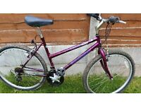 ladies/Girls Mountain Bike £45