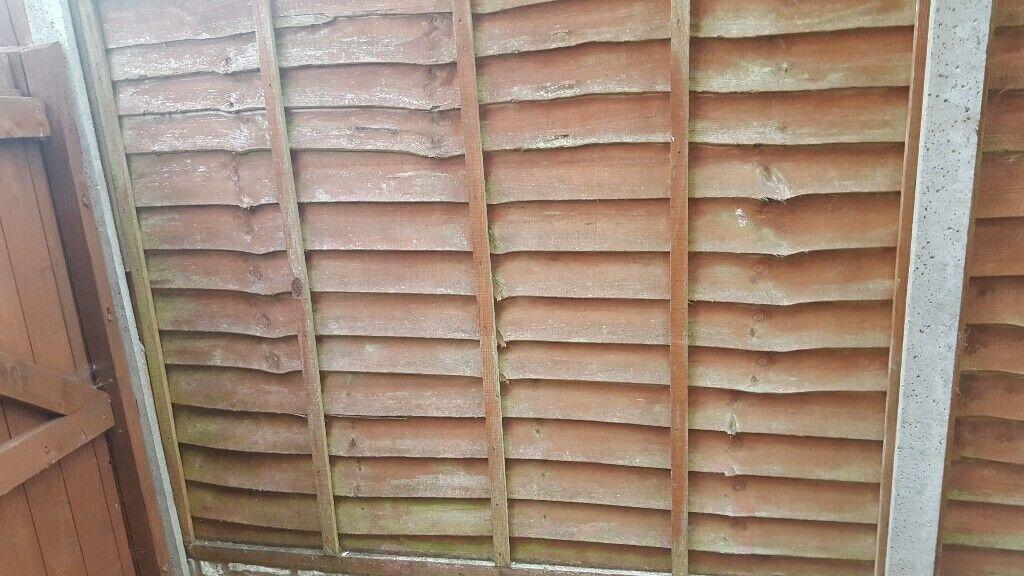 Fence Pannels In Bulkington Warwickshire Gumtree