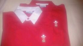 Kids age 8-12 Wales Rugby/Polo Shirts.