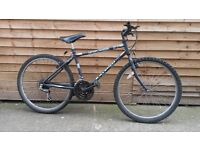 Raleigh Zenith Mountain Bike