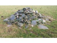 hedging stone big pile
