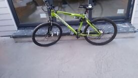 Muddy fox green mountain bike