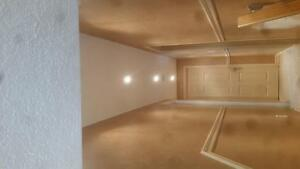 ceiling repair and new Kitchener / Waterloo Kitchener Area image 1