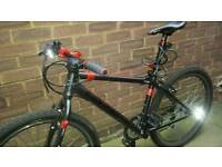 Carrera mountain bike (in excellent condition)