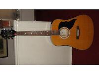 Eko Ranger 6 Jumbo Acoustic Guitar