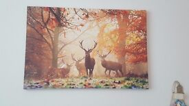 Autumn themed canvases
