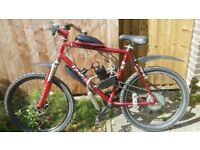 80CC 2 STROKE MOUNTAIN BIKE