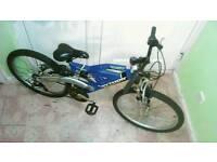 Python full suspension mountain bike