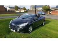 2006 55 peugeot 307 cc 1.6 convertible with full service record