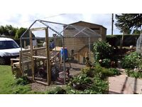 Large walk in chicken Run 4m x 2m New flat packed