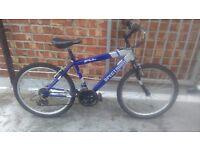 Spectum boys/teen mountain bike