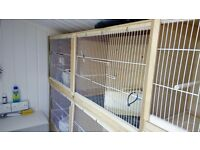 double budgie bird breeding cage