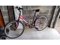 lady's cycle giant gsr 90 good condition suitable for teenager boy or girl