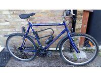 21 1/2 inch Americano Professional mountain bike, in good condition £35