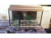 Medium Sized Complete Fish Tank Set up