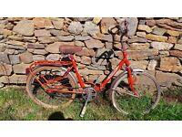 Vintage Retro Italian DINO AURELIA Folding Shopper Town Bike Bicycle Cycle