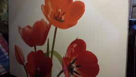 46/30 Inch Flower Canvas Print