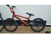 "Bmx stunt bike 20"" wheels 360• giro Fully working"