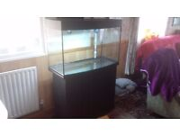 large fish tank 200+ ltrs, perfect condition no damages