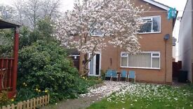 Lovely double rooms in new detached house, furnished, WIFI,Rugby Centre