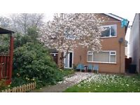 Lovely 2 double rooms in new detached house, furnished, WIFI,Rugby Centre