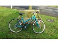 Apollo mountain bike.