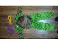 Ninja Turtles fancy dress costume