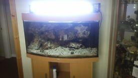 Juwel marine tank