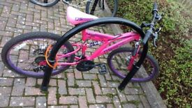 Dunlop pink girls bike