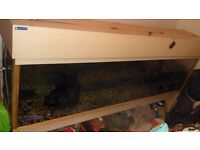 6ft tank with stand