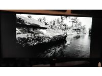 LG Ultrawide 29 inch monitor
