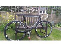 Dolan Track Champion 58cm frame , Navigator Carbon Wheels- Complete bike