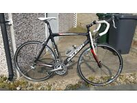 Raleigh Carbon Comp, Tiagra Group Set, 22.5 Inch Frame