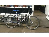 Raleigh Fixed Gear single speed bicycle