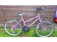 """Ladies / Girls Raleigh 24"""" Wheel Mountain Bike"""