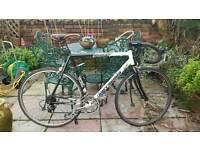 Large framed road bike (project)