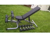 Body Solid weight bench and hex rubber dumbbell weights