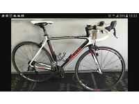 Poggio Meck Full Carbon Frame 18 Speed Cycle
