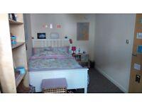 Lovely Room in Brighton city center