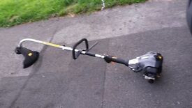 Petrol strimmer . Chainsaw . Hedge trimmer .