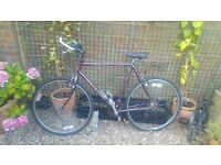 """23"""" Bike, Raleigh Pioneer Trial Hybrid 18 speed. New tyres, pedals and handle bars. Full service."""
