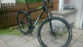 Diamond back Ascent 29er mountain bike