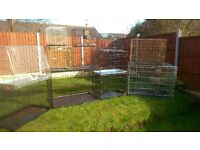 dog cages and beds
